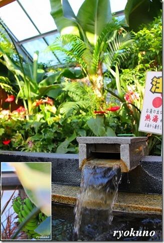 花の湯 家族風呂